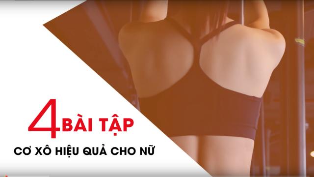 Gymer - Tập cơ lưng + vai + bắp tay cho cả nam và nữ