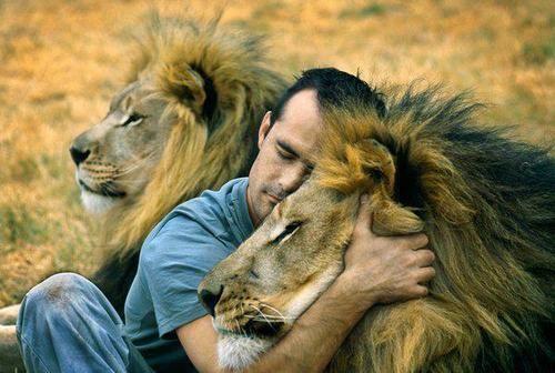 他不是馴獸師,卻能讓獅子熱情的舐拭他,他被人們稱為【獅語者】