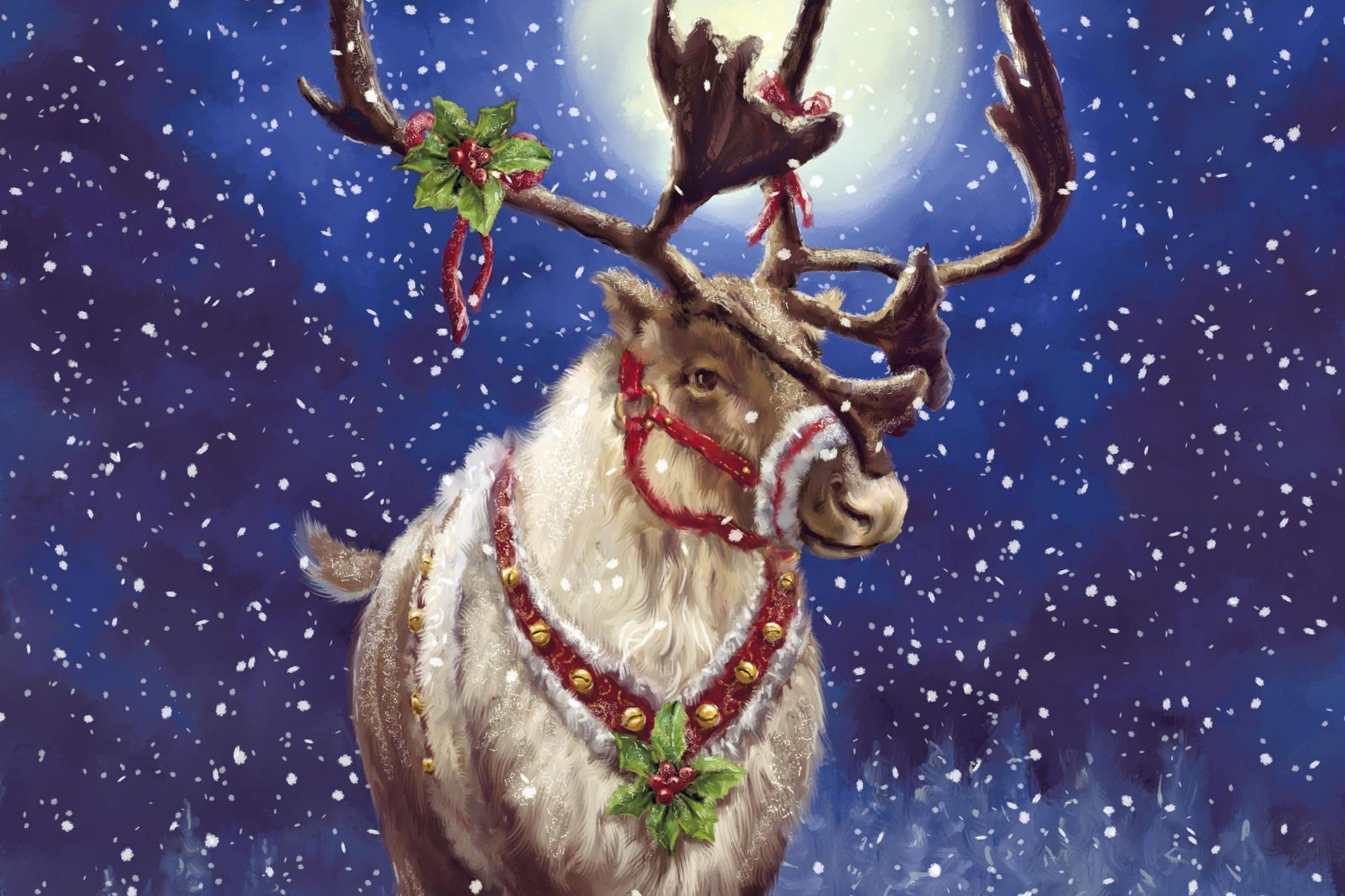 【馴鹿】超可愛的聖誕佳節動物~