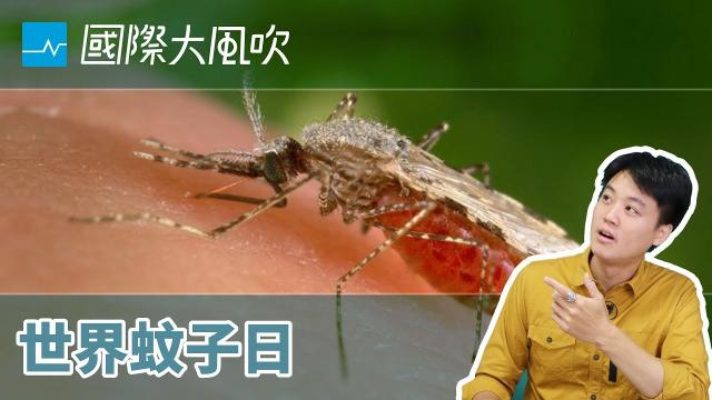 瘧疾:世界與蚊子的無限之戰|國際大風吹|EP68